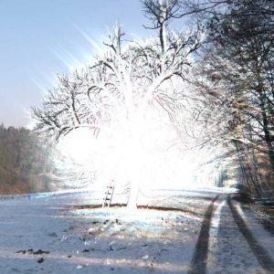 Light explosions 12